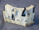 Alaskan Ivory